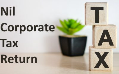 How much does nil corporate tax return cost?